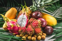 Thailand Ranked 6th Among World's Largest Fruit Exporters